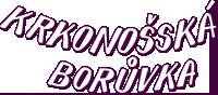Krkonošská Borůvka